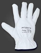 Mynd AVEDO Hanskar 256 Leather Fabric Galazy Arctic 11